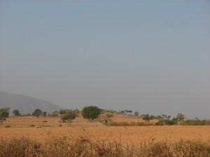 Landscape on the way to Gopalaswamy Betta