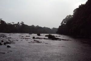 KushalNagar Dubare Kaveri