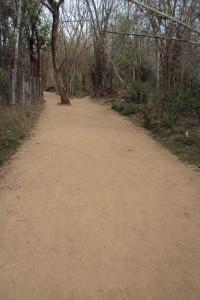 KushalNagar Nisargadhama Path