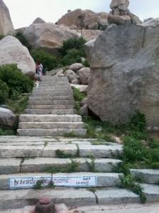 Avani_Steps